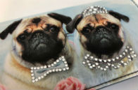 Bride and Groom Pugs Trifold Wallet
